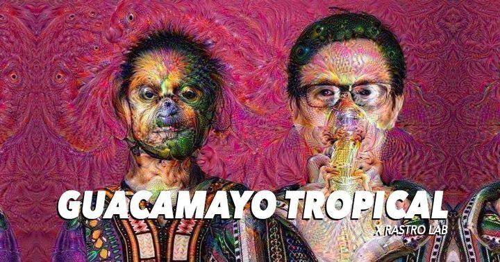 Guacamoyo tropical poster